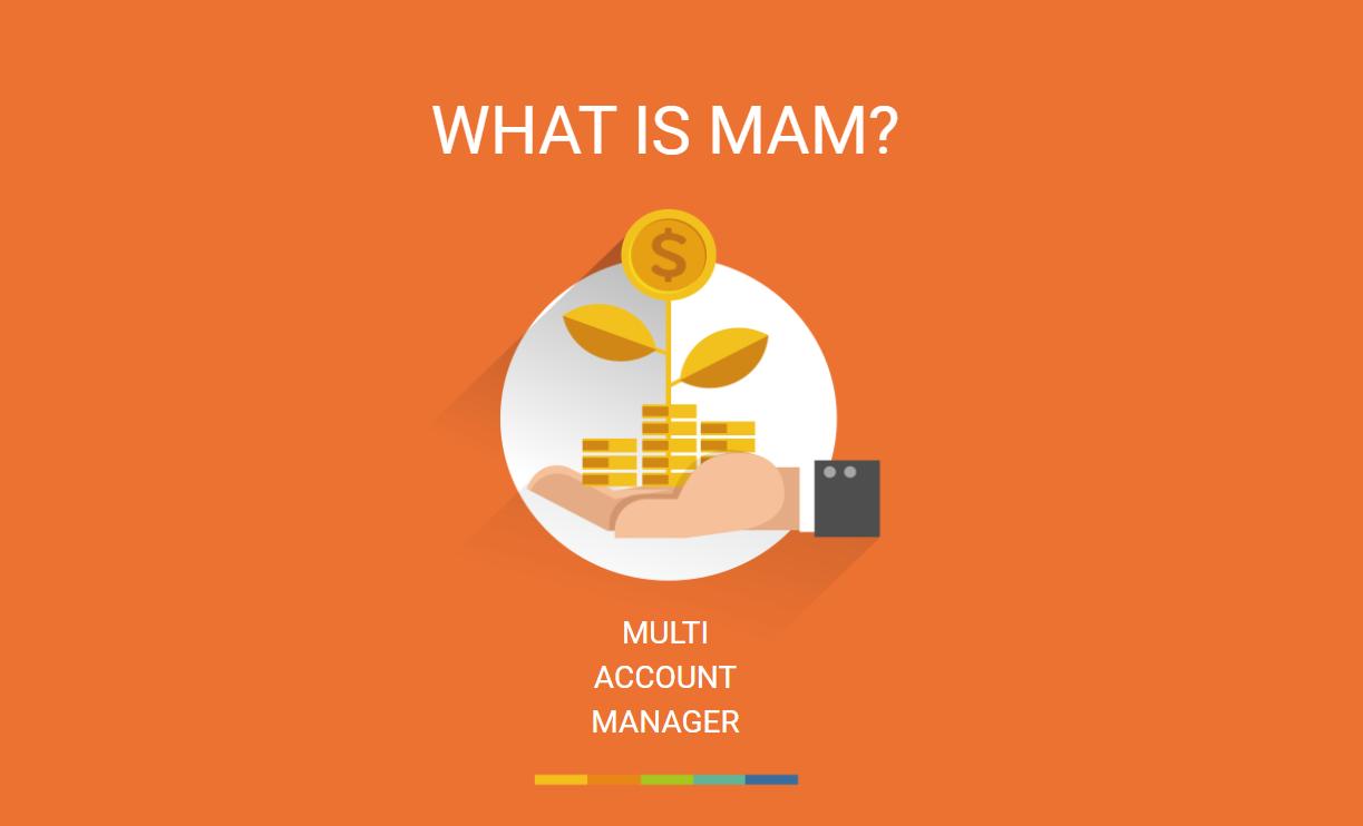 「Amanpuri」マネーマネージャー募集開始!最大50%の手数料を設定可能!